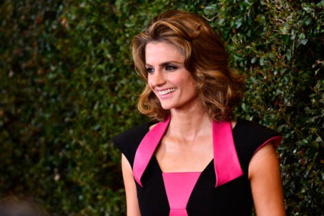 2014 Writers Guild Awards-Stana